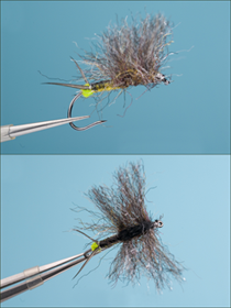 Roman Moser Stone Fly